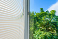 window blinds - PhotoDune Item for Sale