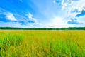 prairie landscape and sky - PhotoDune Item for Sale