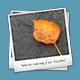 PolarFrame Icon - GraphicRiver Item for Sale