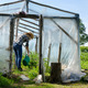 Gardener woman with watering plants in greenhouse - PhotoDune Item for Sale