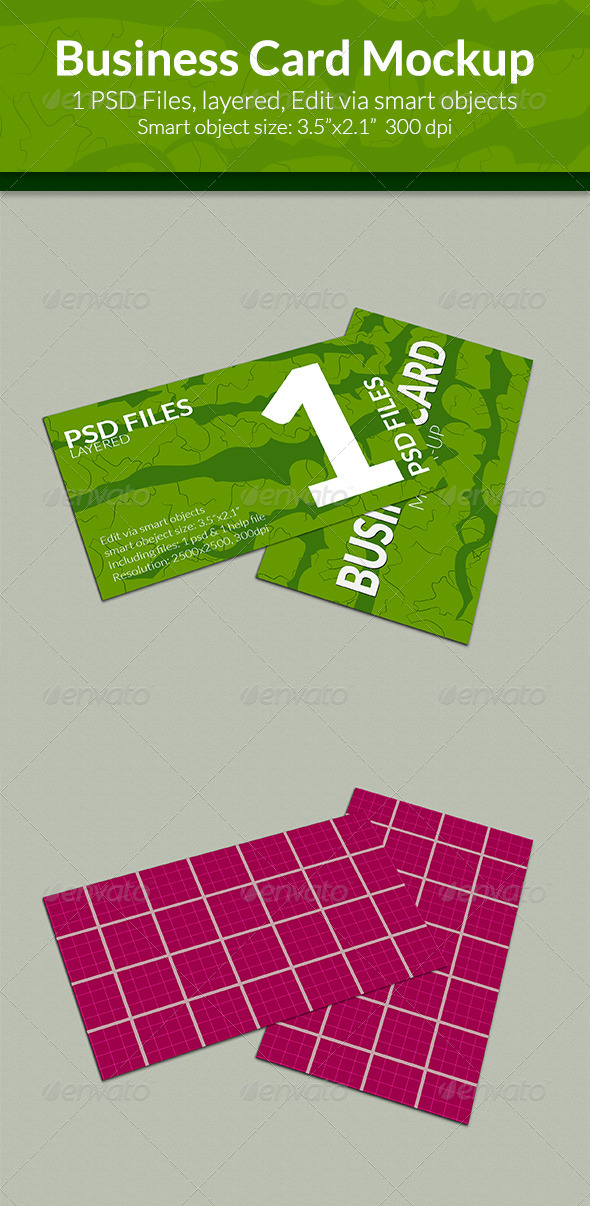 GraphicRiver Business Card Mock-up SS-8 8189009