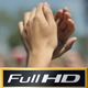 Clapping Hands on Festival - VideoHive Item for Sale