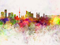 Vilnius skyline in watercolor background - PhotoDune Item for Sale