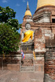 Buddha Statue Ayutthaya - PhotoDune Item for Sale