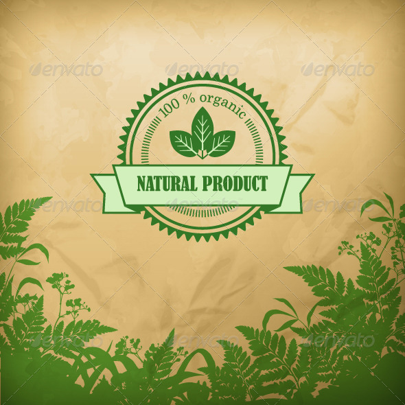 GraphicRiver Natural Organic Herbal Vector Composition 8196550
