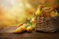 Autumn pears - PhotoDune Item for Sale