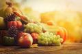 Autumn fruit - PhotoDune Item for Sale
