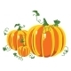 Pumpkin with Leaves on a White Background. - GraphicRiver Item for Sale