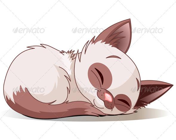 GraphicRiver Sleeping Kitten 8199943