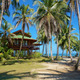 Tropical beach house with coconut trees - PhotoDune Item for Sale