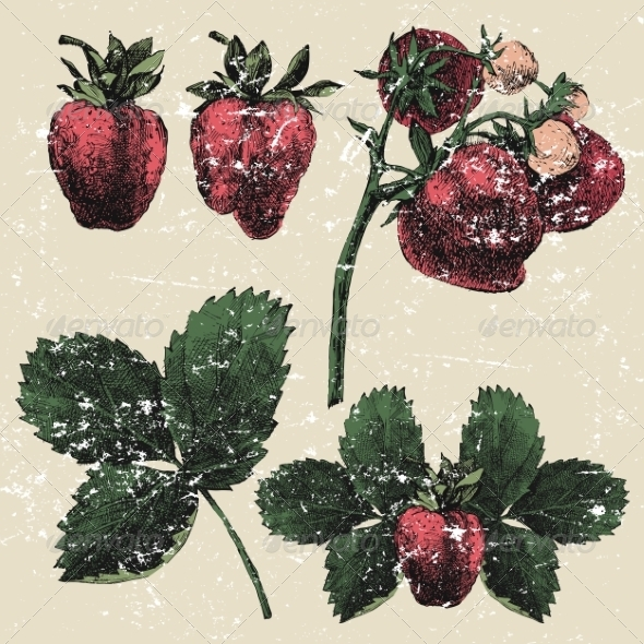 GraphicRiver Hand Drawn Strawberry Set 8203465