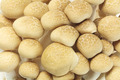 Japanese Brown Beech Mushrooms - PhotoDune Item for Sale