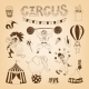Circus Design Elements - GraphicRiver Item for Sale