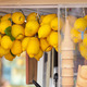 Lemon ice cream kiosk in Capri - PhotoDune Item for Sale