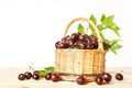 Ripe red cherry in a wicker basket - PhotoDune Item for Sale