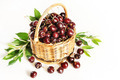 Wicker basket full of ripe red cherry - PhotoDune Item for Sale