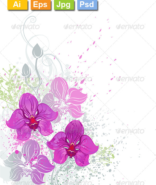 GraphicRiver Pink Orchid 8211531