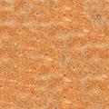 Seamless Toasted - Fried Bread (Toast) Texture - PhotoDune Item for Sale