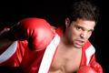 Professional Boxer - PhotoDune Item for Sale