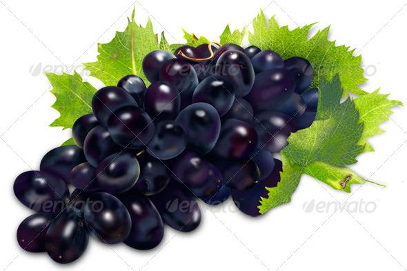 GraphicRiver Grapes Illustration 8189103