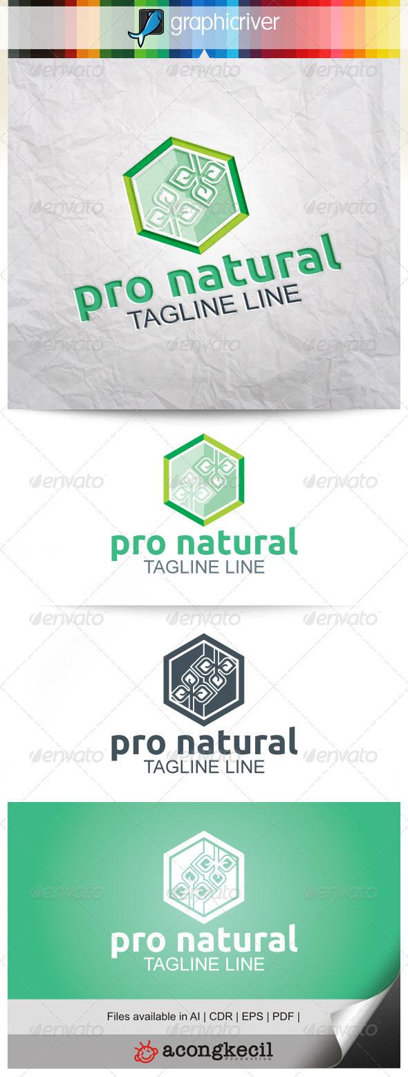 GraphicRiver Pro Natural 8216357