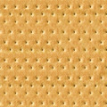 Seamless Detailed Salty Cracker Close-Up Texture - PhotoDune Item for Sale