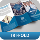 Creative Corporate Tri-Fold Brochure Vol 20 - GraphicRiver Item for Sale