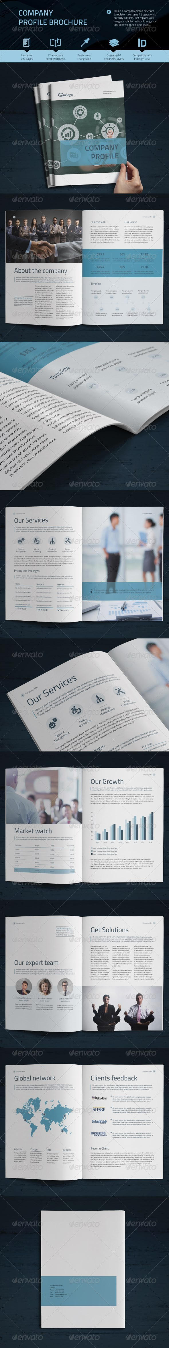 GraphicRiver Company Profile Vol.2 8218274