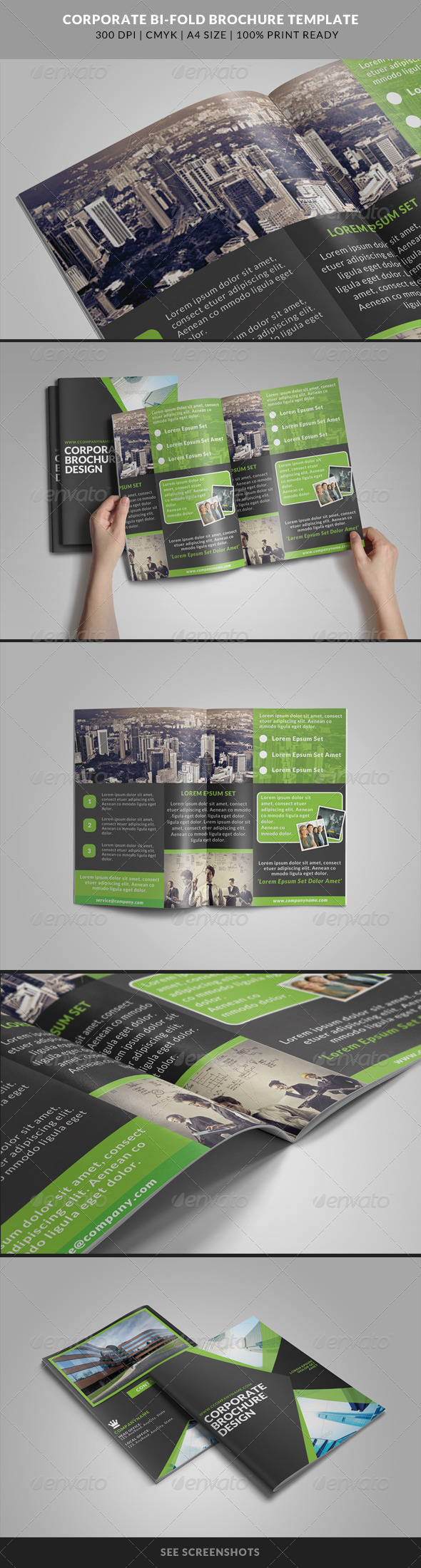 GraphicRiver Corporate Bi-Fold Brochures Template 4 8219574