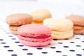 assorted macaroon - PhotoDune Item for Sale