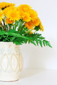 dandelions in a clay vase - PhotoDune Item for Sale