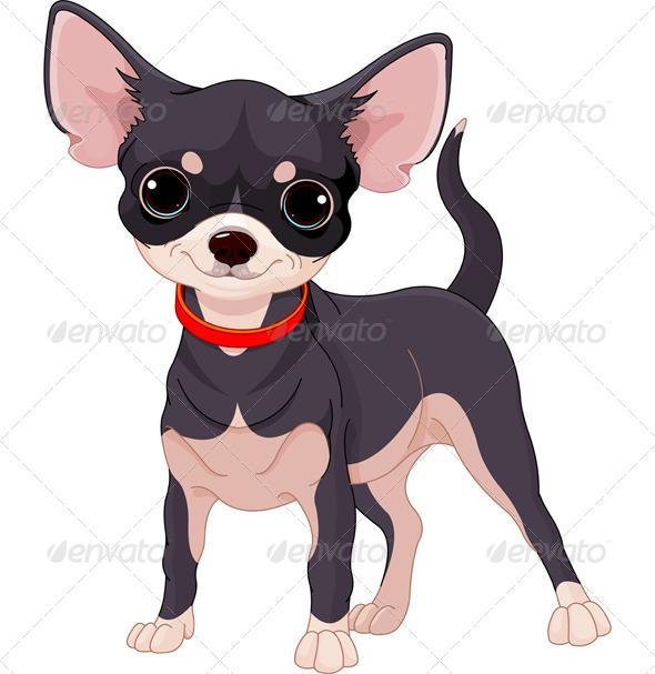 GraphicRiver Chihuahua 8226674