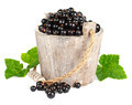 Black currant in a wooden bucket on white background - PhotoDune Item for Sale