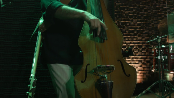 Contrabass At Night Club