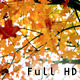 Autumn Leaves Falling and Fluttering - VideoHive Item for Sale