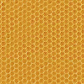 Realistic Seamless Texture of Honeycomb - PhotoDune Item for Sale