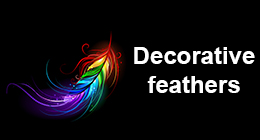 Decorative feathers