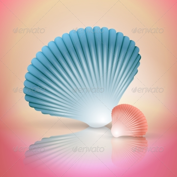 GraphicRiver Big and Small Seashells 8234541