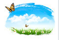 Nature background with green grass, flowers and a butterfly.  - PhotoDune Item for Sale