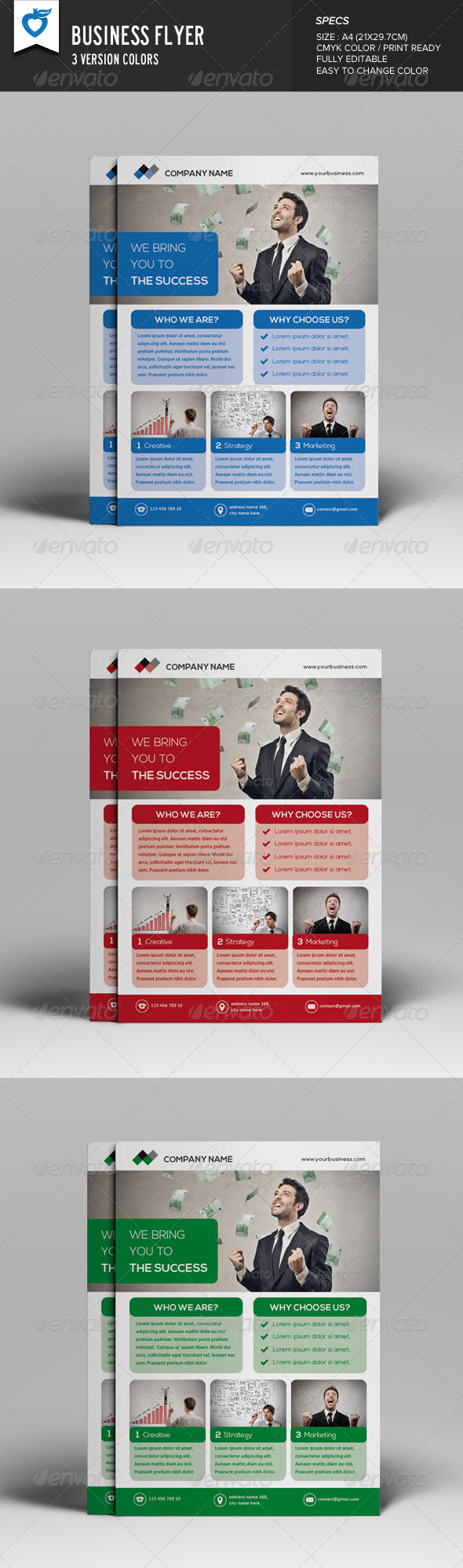 GraphicRiver Business Flyer 8241022
