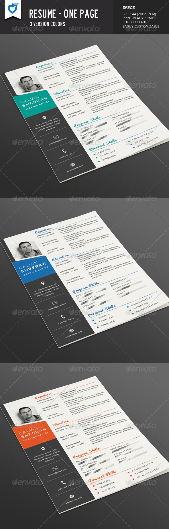 GraphicRiver Resume One page 8241543