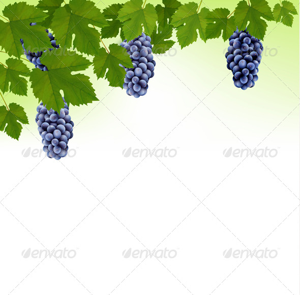 GraphicRiver Background With Grapes 8242739