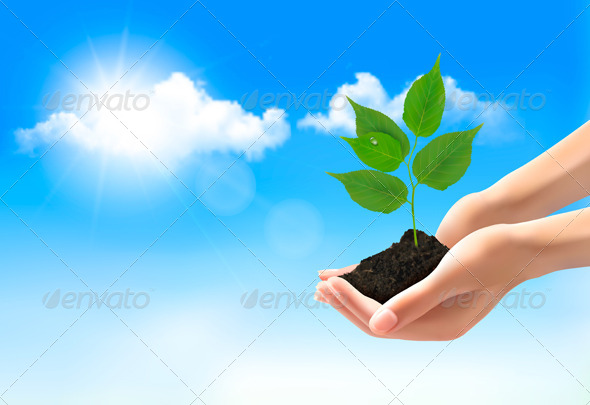 GraphicRiver Hands Holding Young Plant 8242749