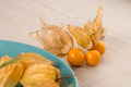 Physalis fruits - PhotoDune Item for Sale