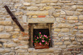 Window in an old house decorated with flower pots and flowers - PhotoDune Item for Sale
