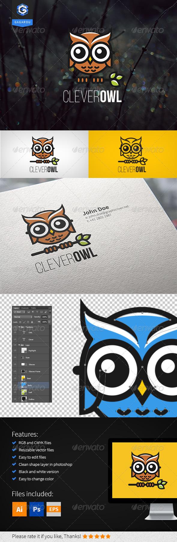 GraphicRiver Clever Owl Logo 8252452