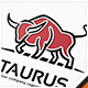 Taurus Bull Logo - GraphicRiver Item for Sale