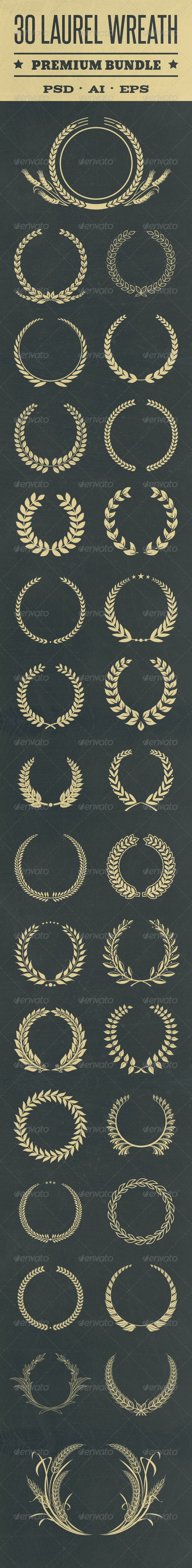 GraphicRiver 30 Laurel Wreath 8253524