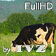 Grazing ?ow - VideoHive Item for Sale