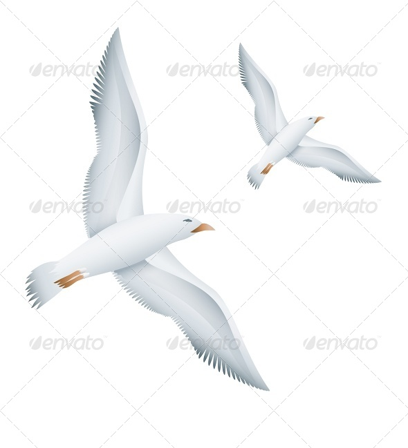GraphicRiver Flying Seagulls Birds 8272228